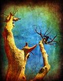 Árbol seco del grunge imagenes de archivo