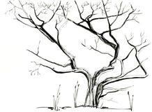 Árbol sin bosquejo dibujado mano de la tinta de las hojas Aislado Imagenes de archivo