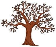Árbol sin las hojas Foto de archivo libre de regalías
