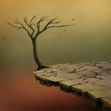 Árbol sobre un acantilado Fotos de archivo libres de regalías