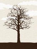 Árbol solitario descubierto ilustración del vector