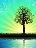 Árbol solitario que refleja en agua stock de ilustración