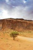 Árbol solo delante de una de las motas en el monumento único Val Imagenes de archivo