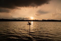 Árbol solo durante puesta del sol antes de la tormenta fotografía de archivo libre de regalías