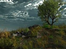 Árbol solo en la colina Fotografía de archivo libre de regalías