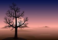 Árbol solo. Puesta del sol. Montañas en niebla. Antecedentes del vector. Fotos de archivo libres de regalías