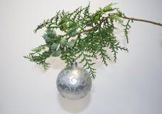 Árbol spruce imperecedero de la Navidad y una bola de plata con Santa Claus Imagen de archivo
