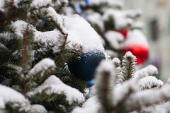 Árbol spruce natural adornado para la Navidad Fotos de archivo