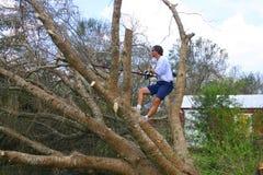 Árbol tragado corte del hombre Foto de archivo libre de regalías