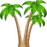 Árbol tropical stock de ilustración