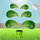 Árbol un diseño de concepto inforaphic del elemento del crecimiento Imagenes de archivo