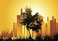 Árbol urbano Imagen de archivo libre de regalías