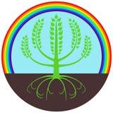Árbol verde bajo el arco iris foto de archivo