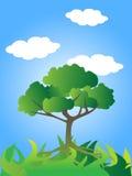 Árbol verde con el cielo azul Stock de ilustración