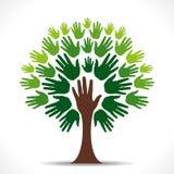 Árbol verde de la mano Foto de archivo