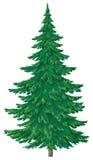 Árbol verde de la Navidad Fotos de archivo
