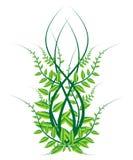Árbol verde de temporada ilustración del vector