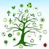 Árbol verde e iconos ambientales Imagen de archivo