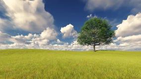 Árbol verde en el cielo nublado ventoso del campo