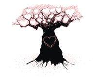 Árbol viejo del amor Fotografía de archivo