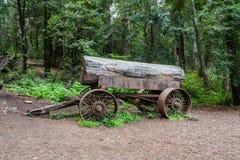 Árbol viejo en un carro Imágenes de archivo libres de regalías