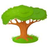 Árbol viejo grande libre illustration