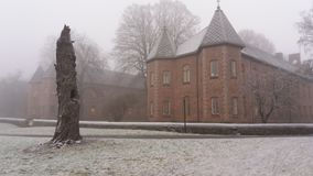 Árbol viejo torcido por el edificio viejo Imagenes de archivo