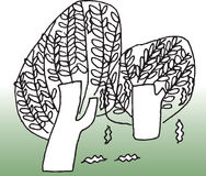 Árbol y ambiente Imagen de archivo