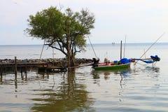 Árbol y barco en paisaje marino Foto de archivo libre de regalías