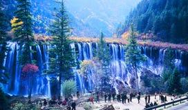 Árbol y cascada del otoño en jiuzhaigou Imagen de archivo libre de regalías