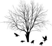 Árbol y cuervos stock de ilustración