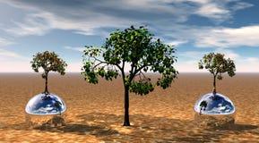 Árbol y dos bolas Fotos de archivo libres de regalías