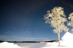 Árbol y estrellas brillantes bajo luz polar Fotos de archivo