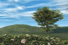 Árbol y jardín de Firethorn stock de ilustración
