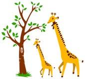 Árbol y jirafa Foto de archivo