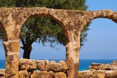 Árbol y mar a través de los arcos Imagenes de archivo
