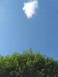 Árbol y nube Fotografía de archivo