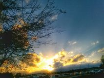 Árbol y nubes Fotografía de archivo libre de regalías