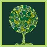 Árbol y pájaros verdes. Fotos de archivo