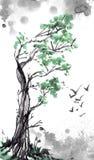 Árbol y pájaros viejos Foto de archivo libre de regalías