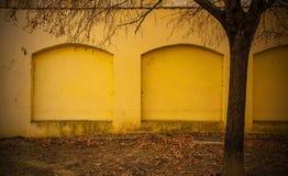 Árbol y pared amarilla en Zagreb imagenes de archivo