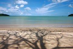 Árbol y playa de la sombra Fotografía de archivo