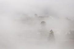 Árbol y pueblo en un fondo de la niebla Fotos de archivo libres de regalías