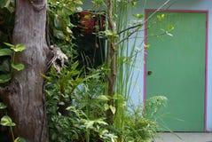 Árbol y puerta Fotos de archivo