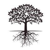 Árbol y raíces negros Ilustración del vector