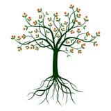 Árbol y raíces verdes stock de ilustración
