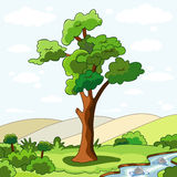 Árbol y rivulet Fotografía de archivo libre de regalías