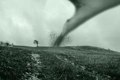 Árbol y tornado Fotografía de archivo