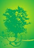 Árbol y trébol Imagen de archivo