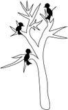 Árbol y tres pájaros Fotos de archivo